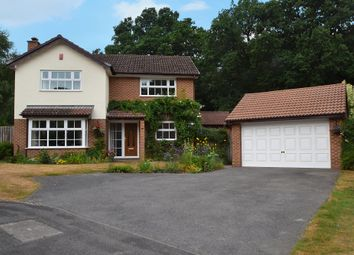 Thumbnail 4 bed detached house for sale in Queensbury Place, Blackwater, Camberley