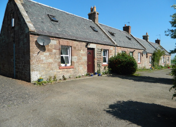 Thumbnail 1 bed semi-detached house to rent in Carfrae Cottages, Garvald, East Lothian, 4Lp