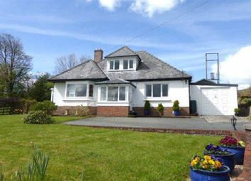 Thumbnail 4 bed bungalow for sale in Blaencwrt, Nr. Lampeter, Ceredigion