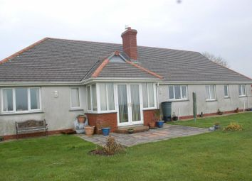 Thumbnail 3 bed bungalow to rent in Maxworthy, Launceston