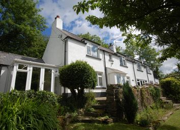 Thumbnail 4 bed detached house for sale in Stepaside, Narberth
