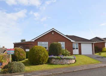 Thumbnail 2 bed detached bungalow for sale in Pinaster Close, Honiton
