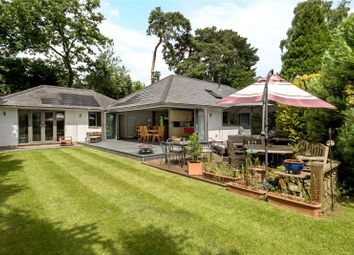 Thumbnail 4 bed detached bungalow for sale in Hurst Way, Pyrford, Woking, Surrey