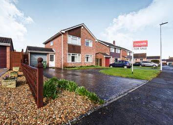 Thumbnail 4 bed detached house for sale in Orchard Close, North Petherton, Bridgwater