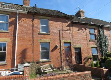 Thumbnail 2 bed terraced house for sale in Chard