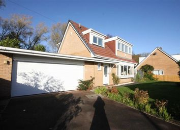 Thumbnail 3 bed detached house to rent in Western Drive, Leyland