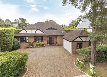 Tekels Avenue, Camberley, Surrey GU15. 5 bed detached house for sale