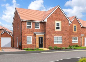 """Thumbnail 4 bed detached house for sale in """"Camberley"""" at Livingstone Road, Corby"""