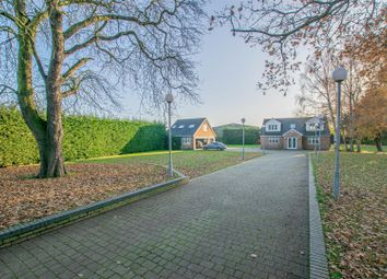 Sedge Green, Nazeing, Waltham Abbey EN9. 3 bed detached house