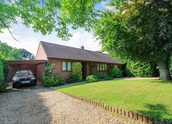 Thumbnail 3 bedroom detached bungalow for sale in Low Road, Strumpshaw, Norwich (On The Brundall Border)