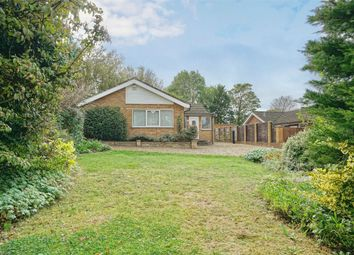 Thumbnail 3 bed detached bungalow for sale in Elm Close, Hargrave, Wellingborough