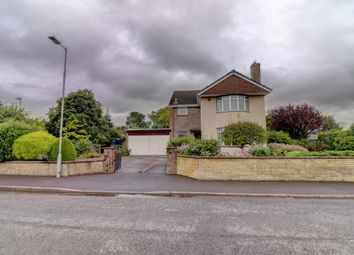Thumbnail 4 bed detached house for sale in Summergate Road, Annan