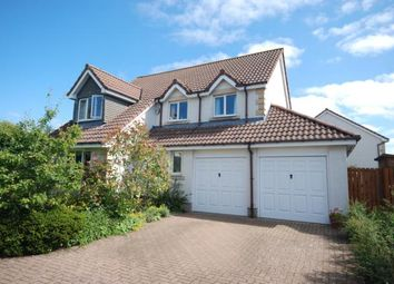 Thumbnail 4 bed detached house for sale in Forbes Place, St Andrews