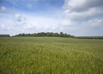 Thumbnail Land for sale in West Stafford, Dorchester, Dorset