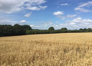 Thumbnail Commercial property to let in Cosmeston & Swanbridge Farmland, Lavernock Road, Penarth, Vale Of Glamorgan