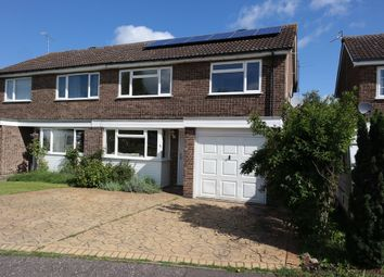 Thumbnail 3 bed semi-detached house to rent in Byron Avenue, Colchester