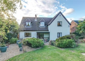 Thumbnail 4 bedroom detached house for sale in The Croft, Bures