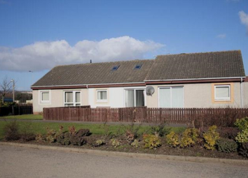 Thumbnail 2 bed bungalow to rent in Balunie Drive, Dundee
