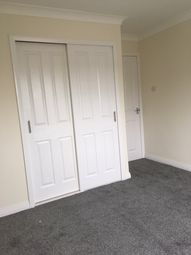 Thumbnail Studio to rent in Weensland Road, Hawick