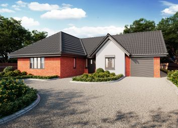 Thumbnail 4 bed detached bungalow for sale in Elmham Road, Beetley, Dereham
