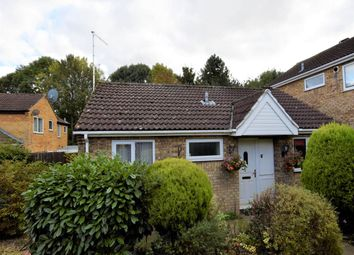 Thumbnail 2 bedroom bungalow to rent in Linnet, Orton Wistow, Peterborough