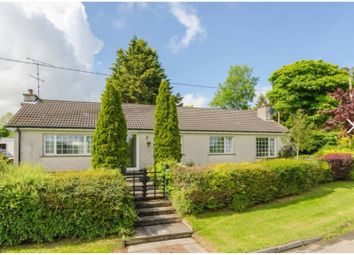 Thumbnail 3 bed detached bungalow for sale in Drumaknockan Road Inc Stables & Paddock, Hillsborough