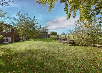 Thumbnail 4 bed detached house for sale in North Waltham, Basingstoke