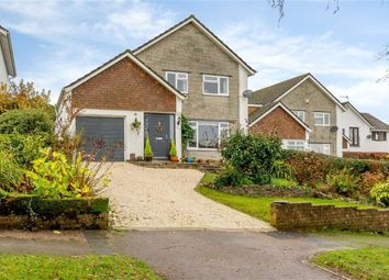 Thumbnail 3 bed detached house for sale in Clearview, Chepstow, Monmouthshire