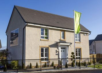 "Thumbnail 4 bedroom detached house for sale in ""Kildrummy"" at Kildean Road, Stirling"