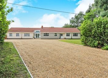Thumbnail 5 bedroom detached bungalow for sale in Rode Lane, Carleton Rode, Norwich