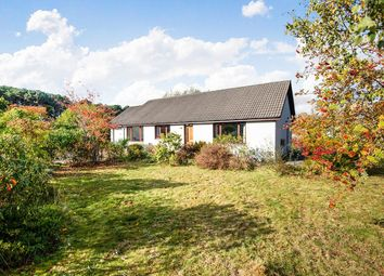 Thumbnail 3 bed bungalow for sale in Braes Of Conon, Conon Bridge, Dingwall