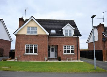 Thumbnail 4 bed detached house for sale in Ingleside Court, Donaghcloney