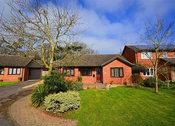 Thumbnail 3 bed bungalow for sale in Limekiln Grove, Highnam, Gloucester
