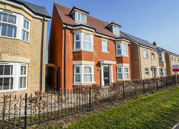 Thumbnail 5 bed detached house for sale in Ipswich Road, Colchester