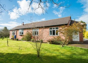 Thumbnail 3 bed detached bungalow for sale in Well Lane, Little Witley, Worcester