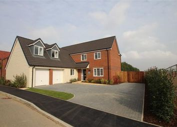 Thumbnail 5 bed detached house for sale in Saxon Fields, Blofield, Norwich