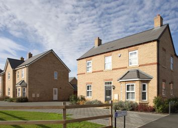 "Thumbnail 4 bedroom detached house for sale in ""The Osterley"" at Potton Road, Biggleswade"