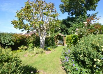 Thumbnail 3 bedroom detached bungalow for sale in Brook Meadow, Exmouth, Devon