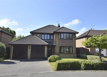 Thumbnail 4 bed detached house for sale in Grays Wood, Horley