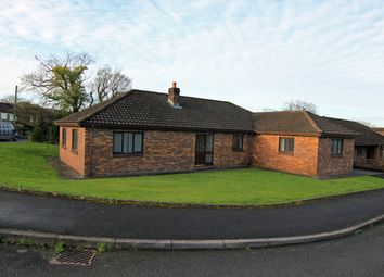 Thumbnail 4 bed detached bungalow for sale in Maesglasnant, Cwmffrwd, Carmarthen, Carmarthenshire