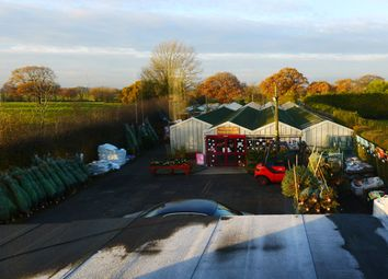 Thumbnail 4 bed property for sale in Garden Centre & Horticulture PR4, Woodplumpton, Preston