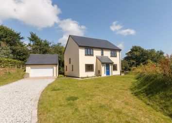 Thumbnail 4 bed detached house for sale in Webbs Orchard, North Tawton