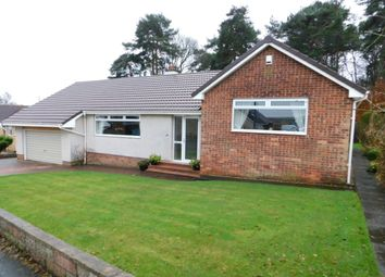 Thumbnail 4 bed bungalow for sale in Lyman Drive, Wishaw