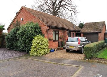 Thumbnail 4 bed bungalow to rent in Ropes Walk, Blofield, Norwich