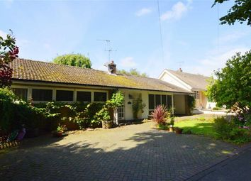 Thumbnail 3 bed detached bungalow for sale in The Rise, Eastgate, Hornsea, East Yorkshire