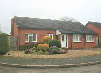 Thumbnail 4 bed detached bungalow for sale in Meadow Close, Kempsey, Worcester