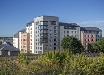 "Thumbnail 2 bed flat for sale in ""Kittiwake"" at Park Road, Aberdeen"