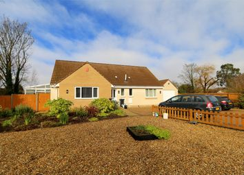 Thumbnail 4 bedroom detached bungalow to rent in Severn Beach, Bristol, South Gloucestershire