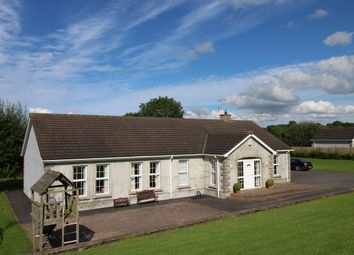 Thumbnail 4 bedroom bungalow for sale in Lough Road, Ballinderry Upper, Lisburn