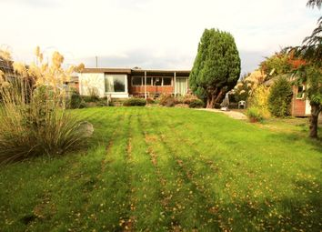 Thumbnail 4 bed bungalow for sale in Ferrymuir Lane, South Queensferry